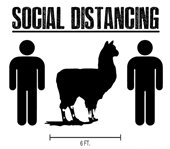 Social Distancing on Trails