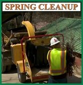 Spring Cleanup