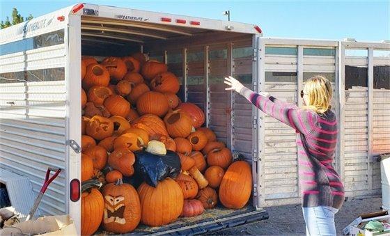 Pumpkin Drop Off
