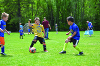 Young children playing soccer