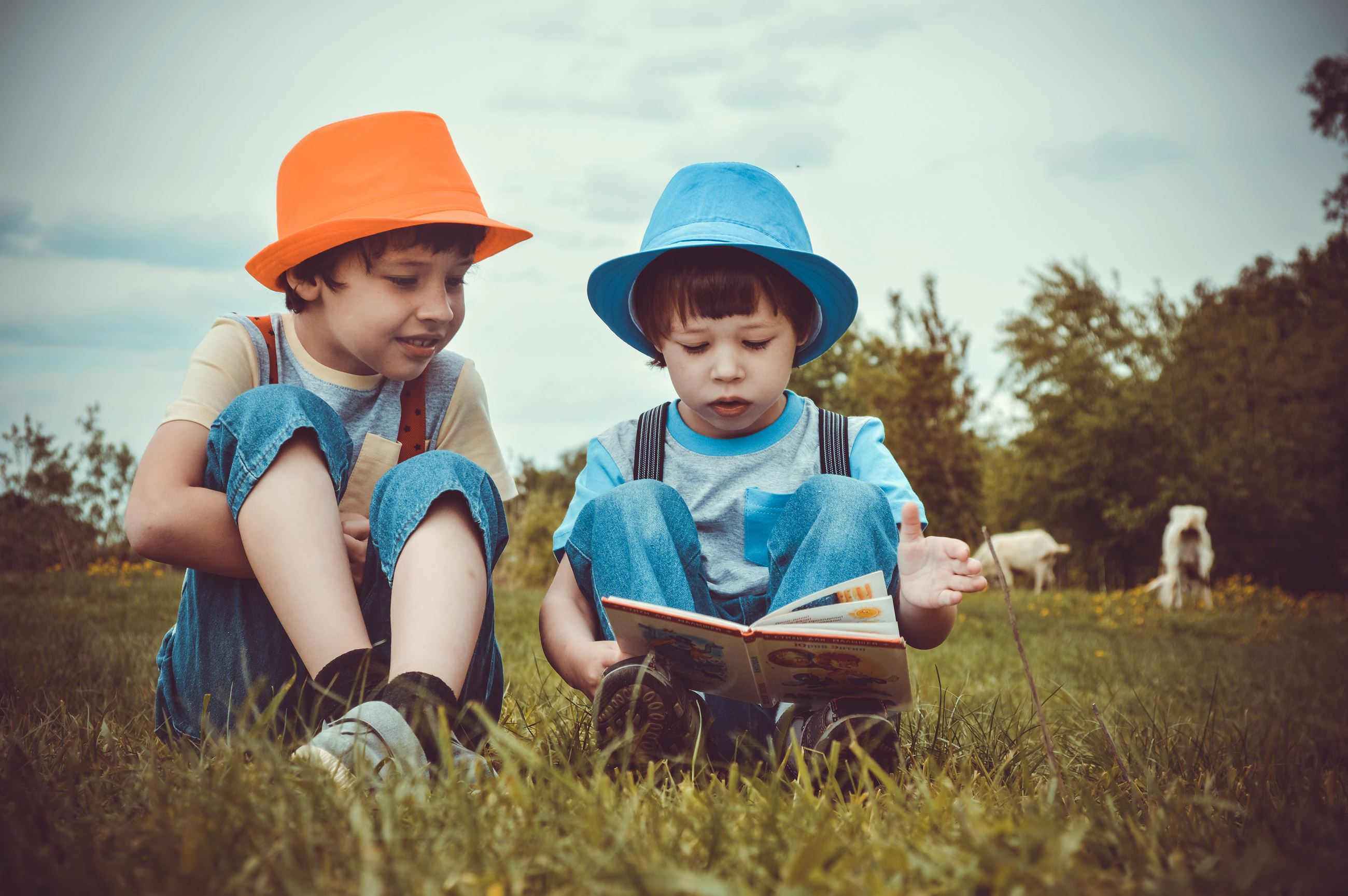 Children Reading in the Grass