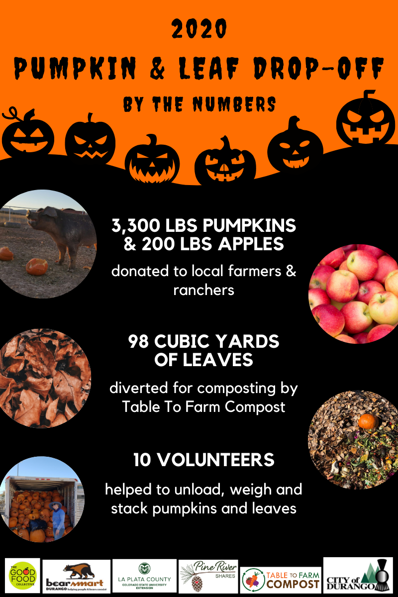 Pumpkin Drop-off Summary