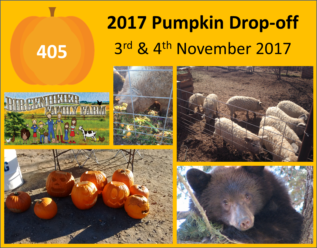 Pumpkin Drop-off 2017