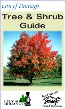 Tree and Shrub Guide